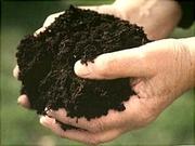 Компост,  минеральные и органические удобрения,  услуги агронома